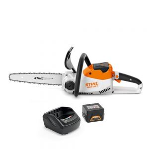 Stihl MSA 120 C-BQ Cordless Chainsaw 12 inch Bar Kit with AK 20 Battery and AL 101 Charger